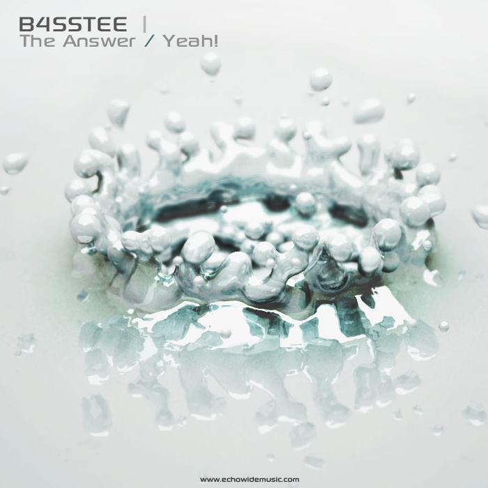 b4sstee-back